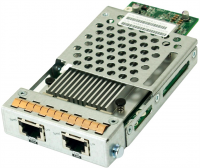 Адаптер Infortrend RER10G0HIO2-0010 Host board with 2x10Gb iSCSI RJ-45 ports